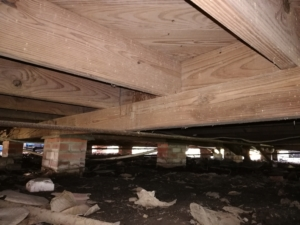 Beams under a home with smalls holes and powder